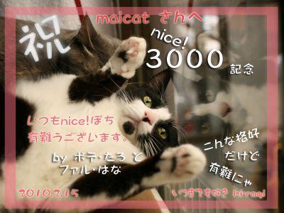 3000nice!thanks_maicatsan-363ff.jpg