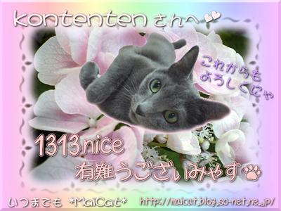 kontentensan_1313.jpg
