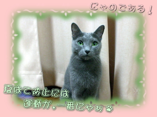 miru_09_kari.jpg