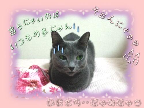 sonekuji_miru02.jpg